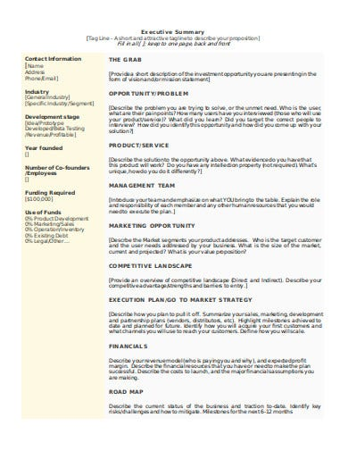 investment opportunity executive summary in doc