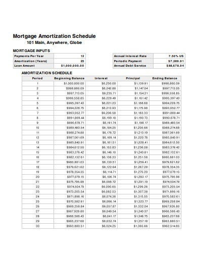 mortgage inputs amortization schedule