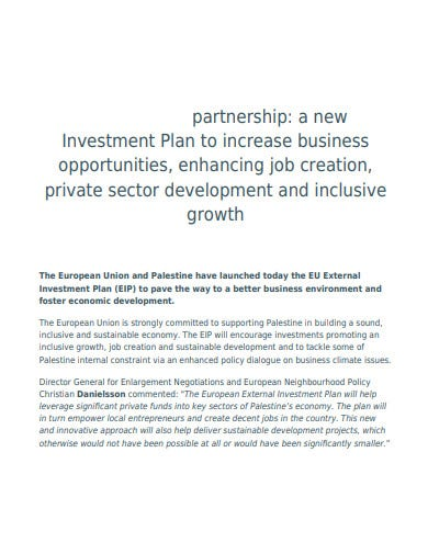 partnership business investment plan template