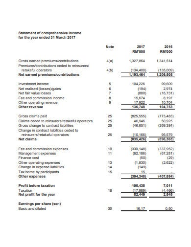 professional statement of comprehensive income