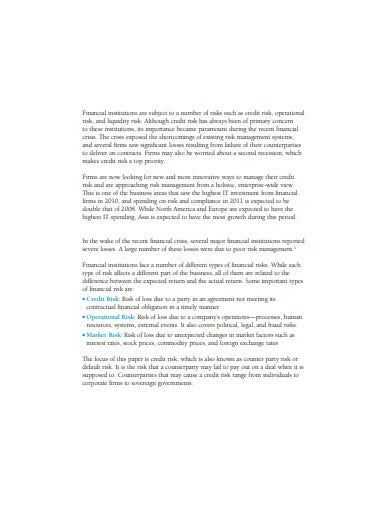 sample credit risk management template