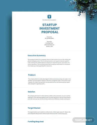 startup investment proposal template1