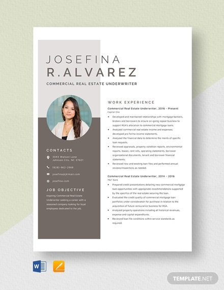commercial real estate underwriter resume 2