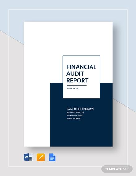 financial audit report 63