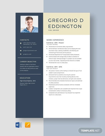 Driver Resume Template 12 Free Word Pdf Document Downloads