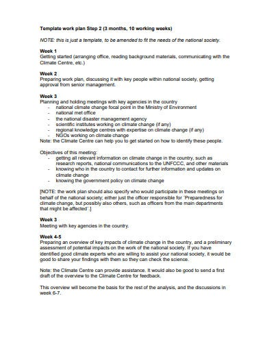 half yearly research work plan template