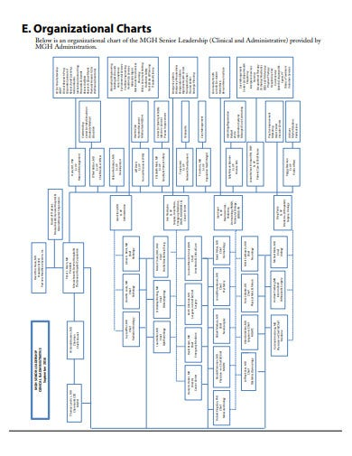 simple partnership organizational chart template
