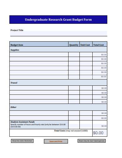 undergraduate research grant budget form