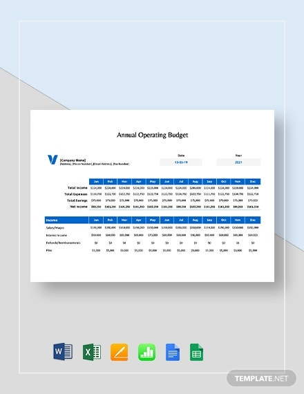 annual operating budget