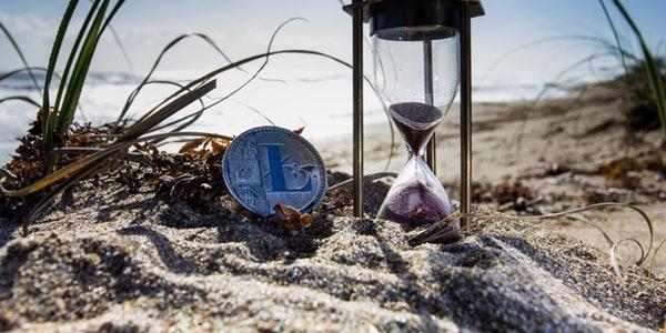 beachbitcoincoin1108191