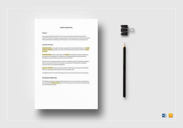 100 day action plan mockup
