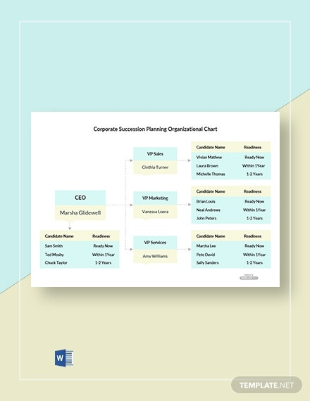 corporate succession planning organizational chart