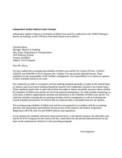 independent auditor opinion letter
