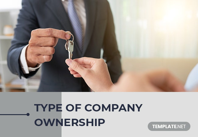 type of company ownership