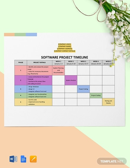 software project timeline template