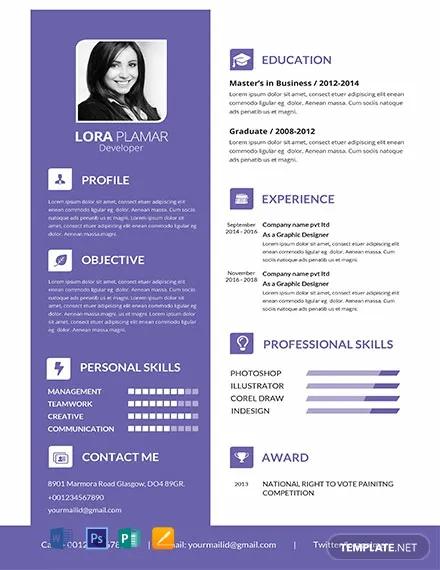 free professional developer resume template